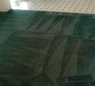 Carpet Deep Cleaning